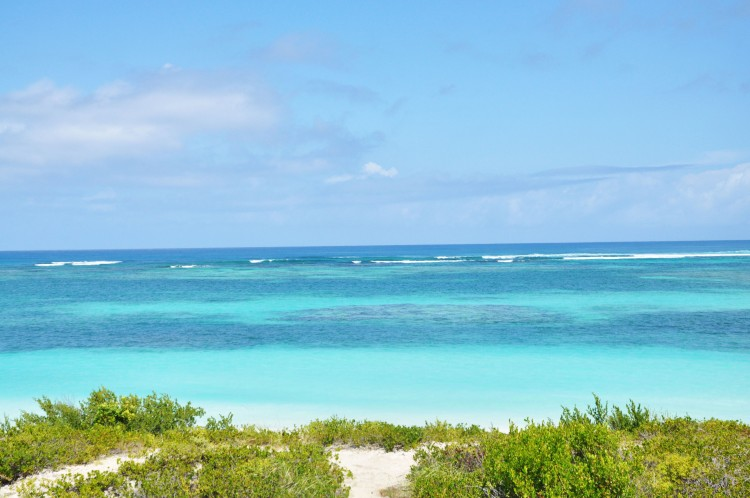 Anegada ocean and beach