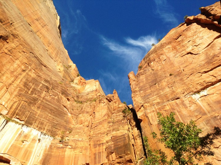 View of cliffs in Zion national park