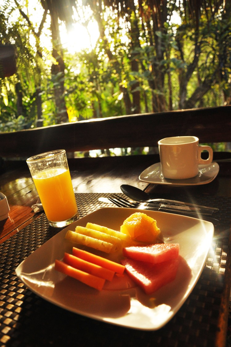 Breakfast in the jungle with sunrise