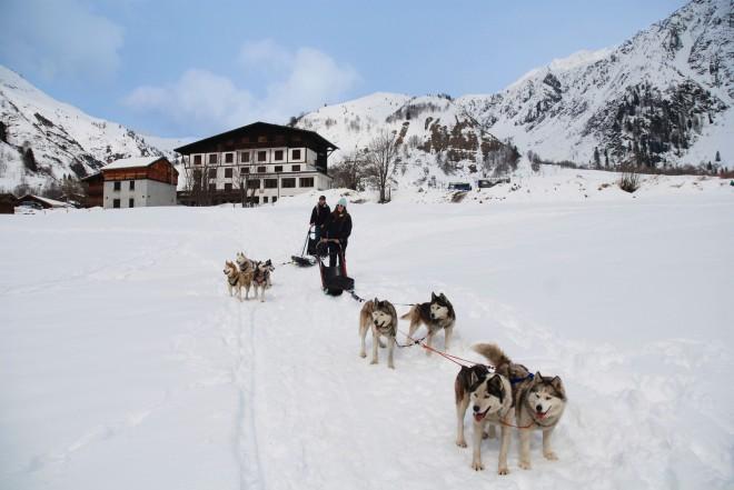 Girl Husky sledding in Chamonix