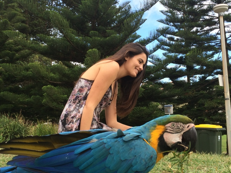 Girl with parrots in Sydney