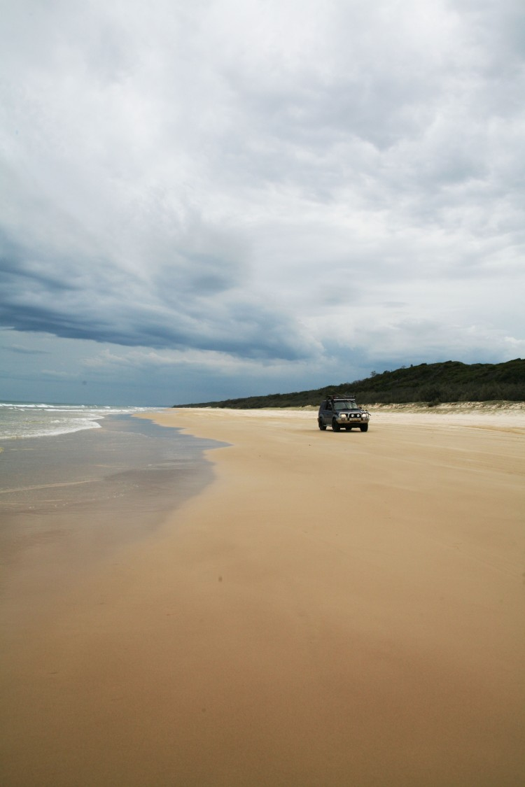 Fraser Island L