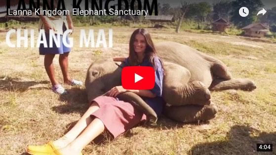 Chiang Mai elephantsanctuary